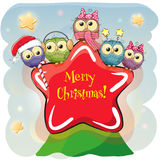 Five Owls on a star. Greeting Christmas card Five Owls on a star Stock Image