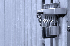 Five padlocks. On a metal gate, concept shot for security related matters Stock Photo