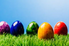 Five painted easter eggs in grass, blue background. Five different color painted easter eggs in grass, blue background Royalty Free Stock Photos