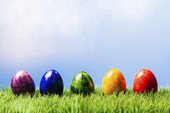 Five painted easter eggs in a row, grass and blue background. Row of five different color painted easter eggs in grass, blue background Stock Image