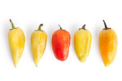 Five pepper with wrinkles. Isolated on white background, different concepts - one red pepper apple between four yellow Royalty Free Stock Photography