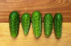 Five Pickles In A Row Royalty Free Stock Photography