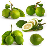 Five picture of lemon green Royalty Free Stock Images