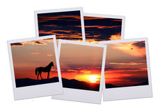 Five pictures of horizon Royalty Free Stock Images
