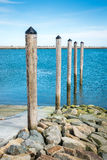 Five Pilings Royalty Free Stock Photo