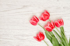 Five pink tulips on a light wooden background. Top view, space for text Stock Image