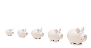Five porcelain pigs stay in row. Isolated on white background Stock Photo