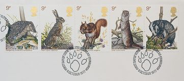 Five postage stamps showing pictures of wildlife. A close up picture five postage stamps with pictures of wildlife royalty free stock photos