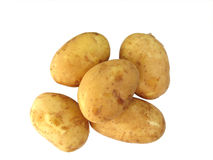 Five potato tubers Royalty Free Stock Photo