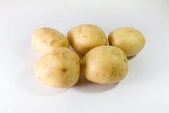 Five Potatoes. White Background stock image