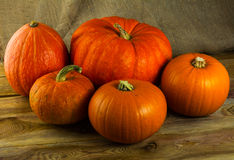 Five  pumpkins on dark wooden background Royalty Free Stock Photo