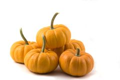 Five Pumpkins on White Stock Image