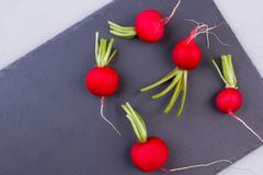 Five radishes on slate, top view. Red organic radishes with a bunch of green tail, copy space Stock Photo