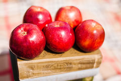 Five red apples on book. Healthy natural fruits. On defocused background. Tasty vitamins, dieting nutrition apples Royalty Free Stock Photo