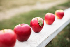 Five red apples Royalty Free Stock Images