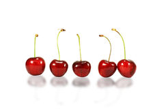 Five red cherries Royalty Free Stock Images