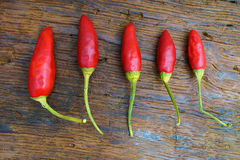 Five red chili pepper pods. Five whole red chili pepper pods on an old rustic wooden table Stock Image