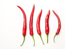 Five red chili peppers Royalty Free Stock Photos