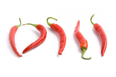 Five red chilly peppers Stock Image