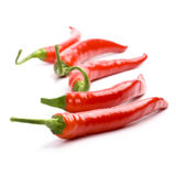 Five red chilly peppers Royalty Free Stock Photos
