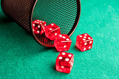 Five red dice  near a container Royalty Free Stock Photography