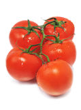 Five red fresh tomatos Royalty Free Stock Images