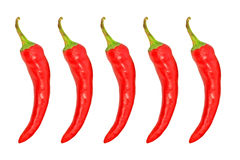 Five red hot chile pepper.Isolated. Stock Images