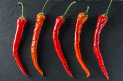 Five red hot peppers on the background of slate. Five red hot Chili peppers lie on the slate Royalty Free Stock Image