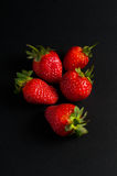 Five red strawberries Royalty Free Stock Photography