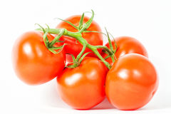 Five red tomato on branch Stock Image