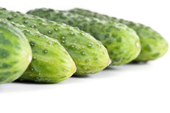 Five ripe cucumber closeup Stock Photo
