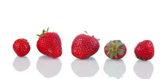 Five ripe strawberries on glass surface Royalty Free Stock Photography