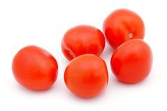 Tomatoes. Royalty Free Stock Photo