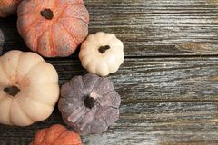 Five rustic aged pumpkins different colors on a rustic wooden background. Five Colorful aged pumpkins with star anise and cinnamon siicks all in horizontal form royalty free stock images