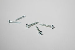 Five screws. On uncluttered background Stock Image