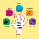 The Five Senses. The Five Sense illustration, set Stock Photography