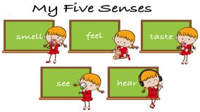 Five Senses on Blackboard with Girl Character. Illustration Stock Images