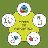 Five senses concept. Five senses with human organs, five senses icons. Vector senses icon, toch icon, smell icon, hear icon, taste icon. The five senses Stock Photo