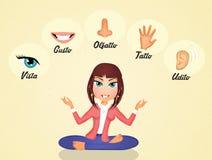 The five senses Stock Photos
