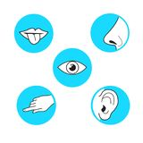 Five senses methods of perception, taste sight touch smell soun. D vector icon on azure blue circle simple black outline and white illustration mouth with tongue stock illustration