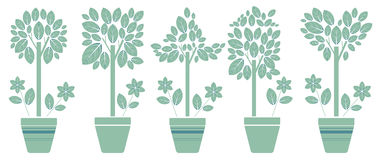 Five set with eco trees in the pot. Set with decorative eco trees in the pot. Vector image for your designs Stock Image