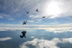 Five skydivers are in the blue sky. royalty free stock image
