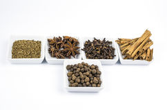 Five sorts of spice Stock Image