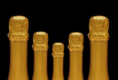 Five sparkling wine bottles Royalty Free Stock Image