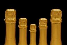 Five sparkling wine bottles Royalty Free Stock Image