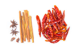 Five spices and dried chili peppers on white background Royalty Free Stock Photos