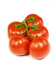 Five Stem Tomatoes. A group of five stem tomatoes are isolated against a white background royalty free stock images