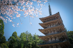Five Storied Pagoda of Daigoji Temple (Daigo-ji) in Fushimi Ward, Kyoto City, Japan. Stock Photo