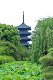 Five storied pagoda of Toji Temple,Japan. royalty free stock photography