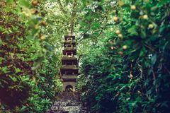 Five-story stone pagoda standing on the top of hill among green trees in japanese garden. Traditional japan exterior design, royalty free stock image